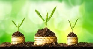 nachhaltige Geldanlagen